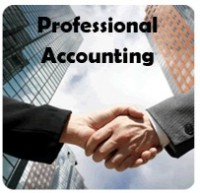 PROFESSIONAL ACCOUNTING