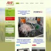 Website pentru firma SC AHIS CONSULTING SRL