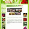 Website pentru firma Floraria Adi