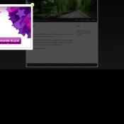Website pentru firma Toma Florin Vasile Persoana Fizica Autorizata