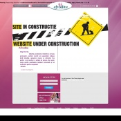 Website pentru firma SC Shopferever SRL