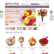 Website pentru firma Floricudrag