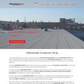 Website pentru firma izolatii