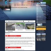 Website pentru firma hidrosistem antony srl