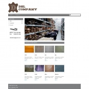 Website pentru firma S.C.DEL COMPANY SRL