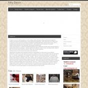 Website pentru firma SC Niky Comstil srl
