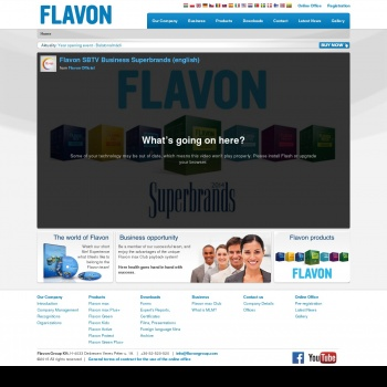 SC FLAVON GROUP SRL
