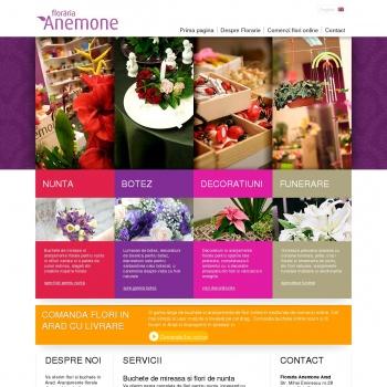Floraria Anemone