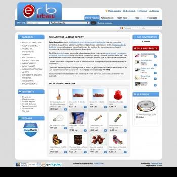 Website pentru firma ERBASU LOGISTIC SRL