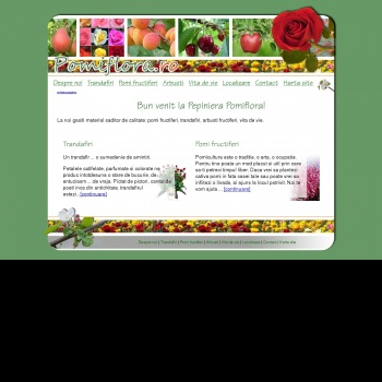 Website pentru firma I.F. Ianko Gheorghe