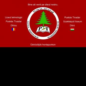 Website pentru firma Grup Scolar Puskas Tivadar Ditrau