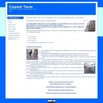 Website pentru firma cosmit term srl
