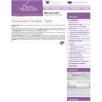 Website pentru firma Negovan Emil Senin PFA